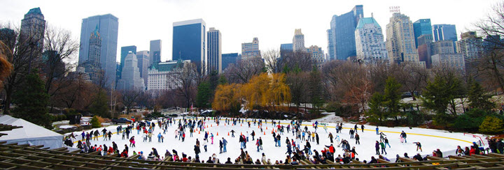 patin glace new york